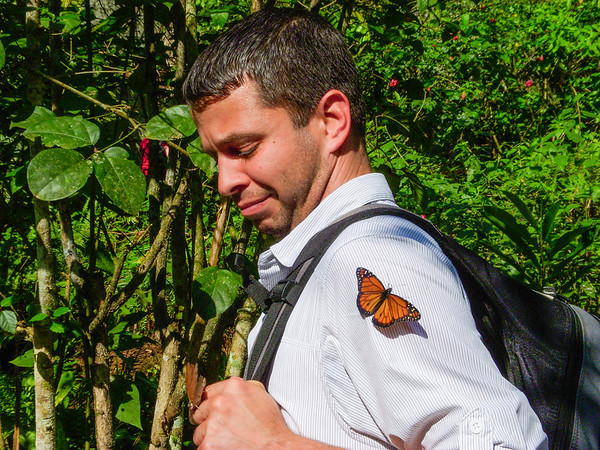 A butterfly landed on Hector and made him VERY uncomfortable. You'd think this thing is about to eat him. It's not.  Photo by Sasha MacDonald
