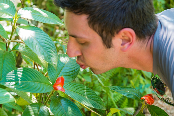 I'm kissing the kissy plant!