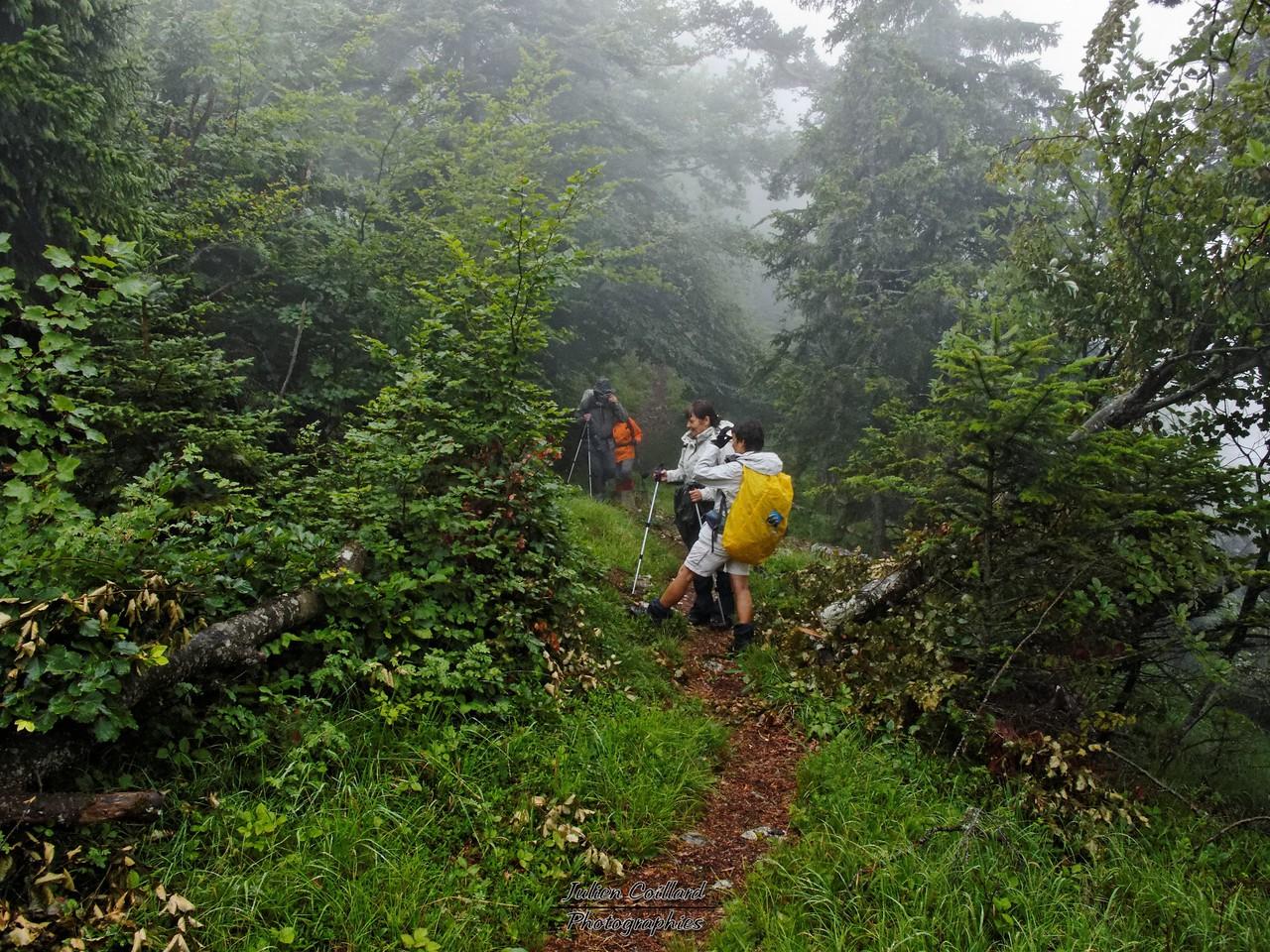 Montagne d'Entrevernes - Montée à la Cochette