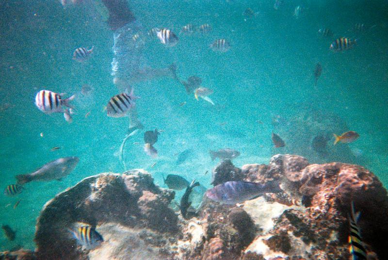 2012 Sea Base Adventure - Bahamas