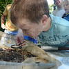 Tribune-Star/Jim Avelis<br /> Up close: Jace Hawkins uses a magnifying glass to get a closer look at what he dredged from a creek bottom at Clay County's Nature Days. His sister Sydney stands behind him waiting for her turn.