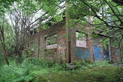 Shettlestone old goods shed in the trees, 03/07/12.