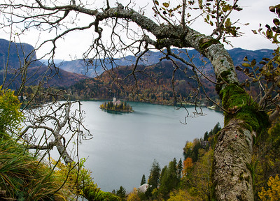 View of the island from Bled Castle.