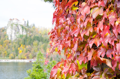 Fall is a beautiful time to visit Bled!