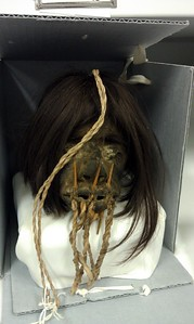 One of the shrunken heads in the collection of the National Museum of Natural History's Department of Anthropology