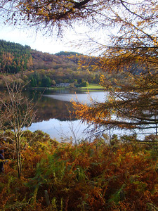 Llyn Crafnant cottage