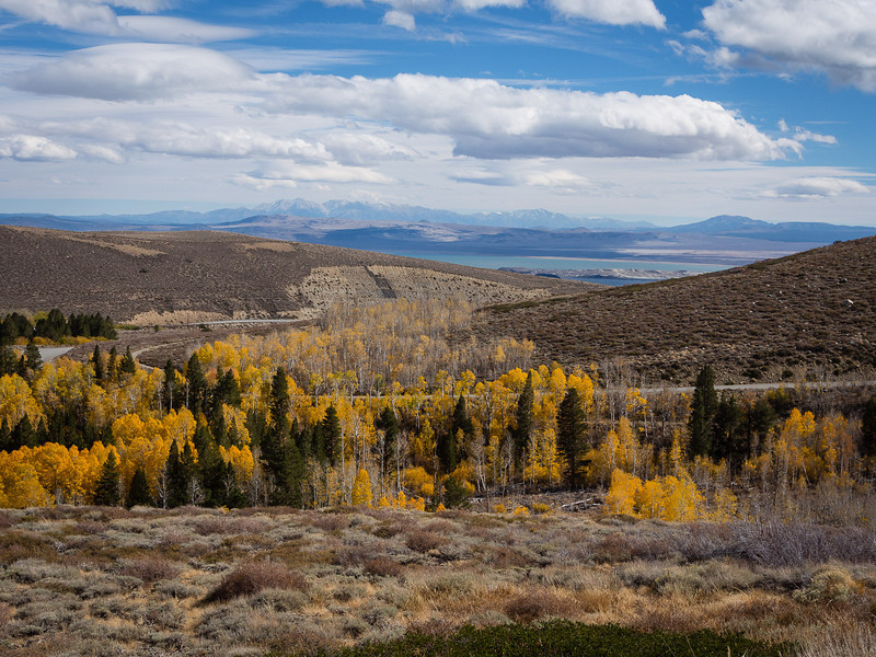 South toward Mono Lake