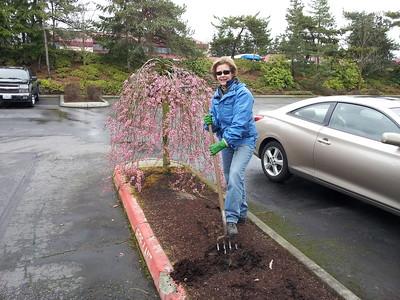 Spring planting at Eastside Harley