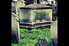 thomas bayes tomb 2 b