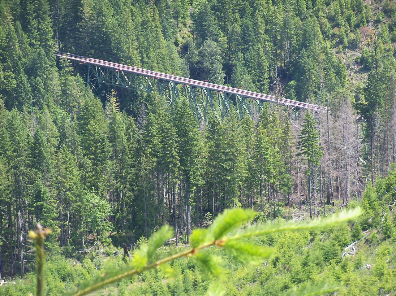 Vance Creek Railroad Bridge from Simpson's Bob Adamek road which Sylvia & I surveyed...
