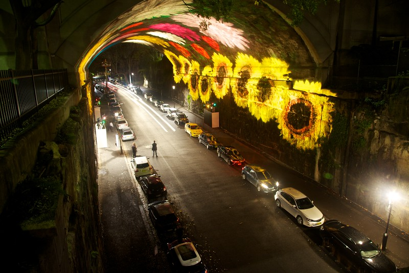 An ever-changing projection of flowers inside the Argyle Cut.