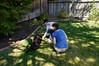 20120902-Film 0371-008