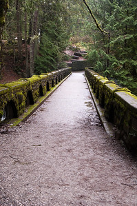At Whatcom Falls Park in Bellingham, WA.