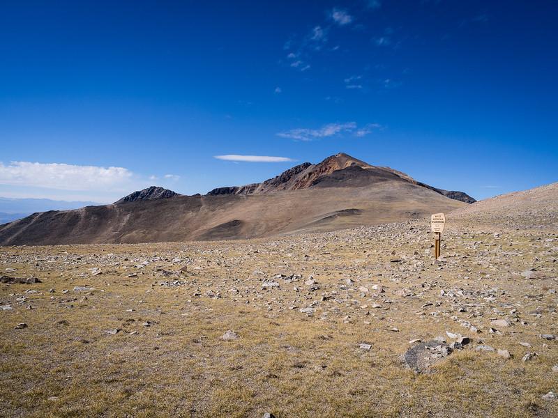 White Mountain Peak again