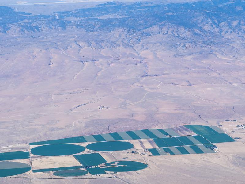Cultivated desert