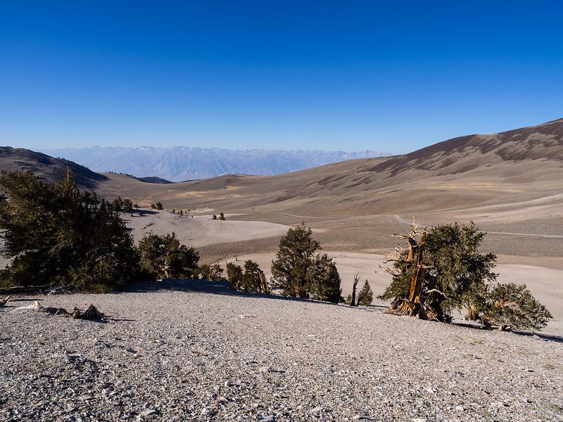 Westward view of the Sierra