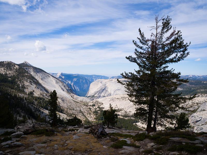 Overlooking Tenaya Canyon