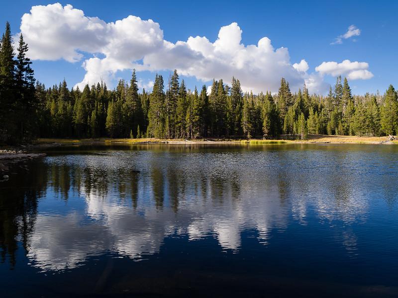 Ripples on Dog Lake