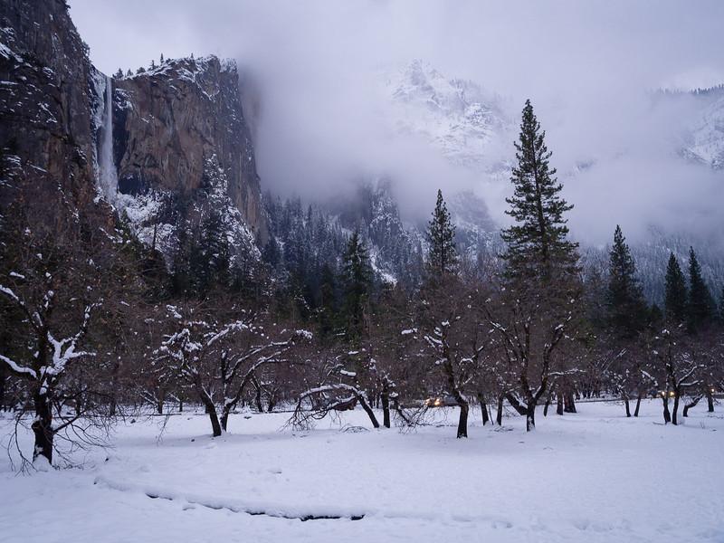 Evening in Yosemite valley