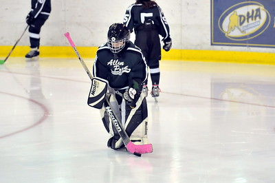 Livonia Flyers - Squirt B