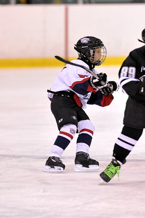 USA Eagles SQUIRT AA