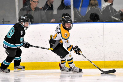 Troy Sting Squirt AA