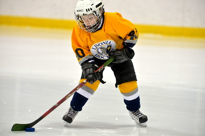 SEMI Livonia Predators Vs Livonia Bruins
