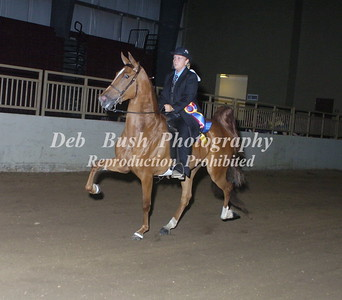 CLASS 20  NATIONALBRED AMATEUR