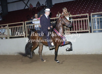 CLASS 27  NATIONALBRED RACKING CHAMPIONSHIP