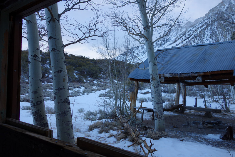 The view from inside the old mining cabin.