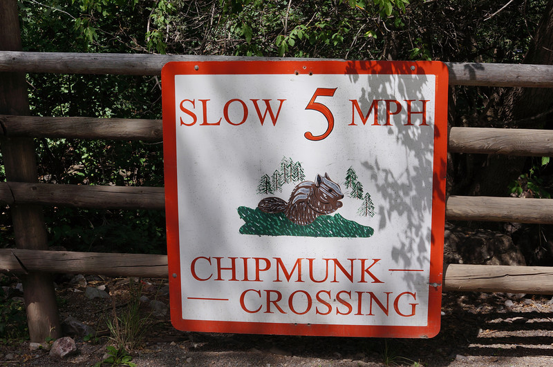 As I approached the parking area at Box Canyon Falls in Ouray, I saw this sign.  I figured it was just something silly someone posted, but then I saw the next sign.... ->