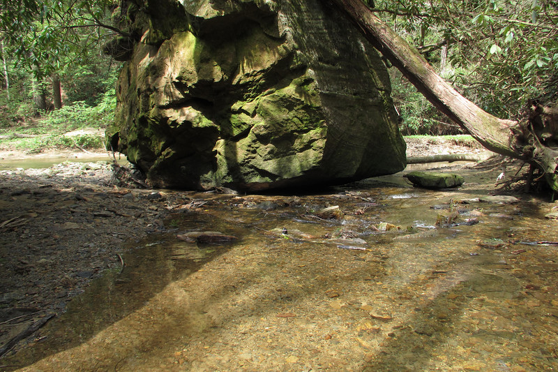 Dog Creek flows into Swift Camp Creek on the other side of the boulder.