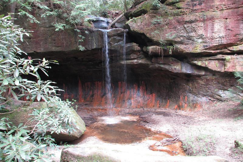 Pooch's Turtle Falls
