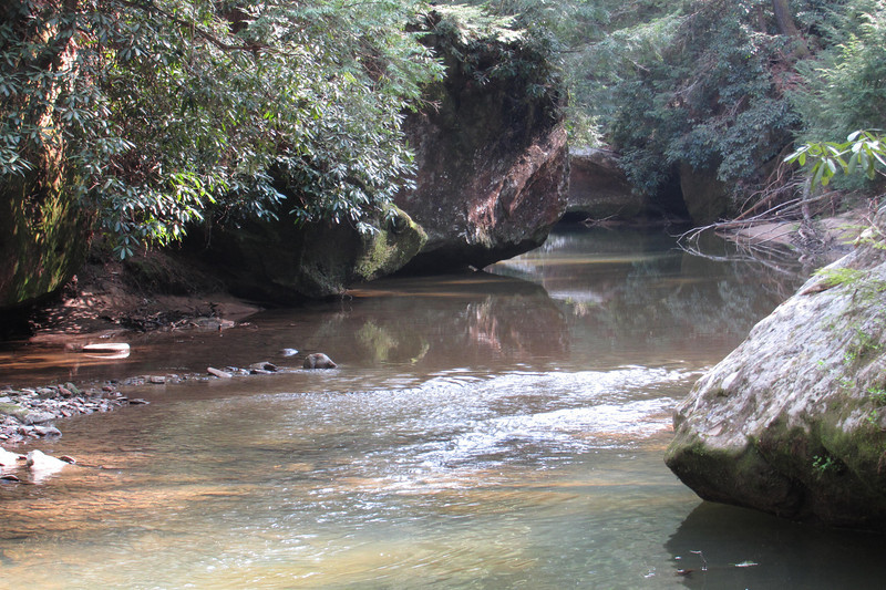 Swift Camp Creek.