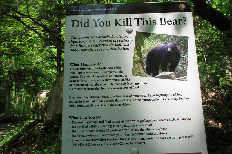 These signs are all over Smoky Mountains National Park, and I'm glad.  People REALLY need to be educated on the ramifications of their behaviors.  There's an estimated 2 black bears per square mile in the park.  Awesome!!!