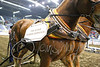 LI3_4040_Heavy_HorsePull