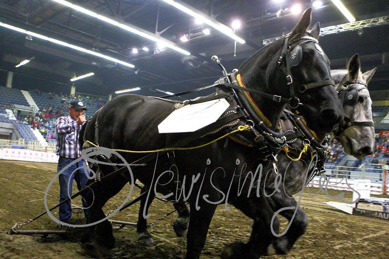 LI3_4037_Heavy_HorsePull
