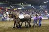 LI3_4056_Heavy_HorsePull