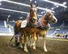 LI3_3617_Lt_Mid_HorsePull