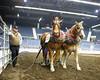 LI3_3616_Lt_Mid_HorsePull