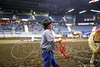 LI3_3612_Lt_Mid_HorsePull