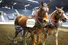 LI3_3610_Lt_Mid_HorsePull
