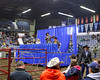 LI3_1480_RanchHorse_Sale_2012