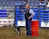 LI3_3249_StockDogs_Final_2012