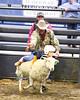 LI3_3236_Wild_Wool_Ride2012