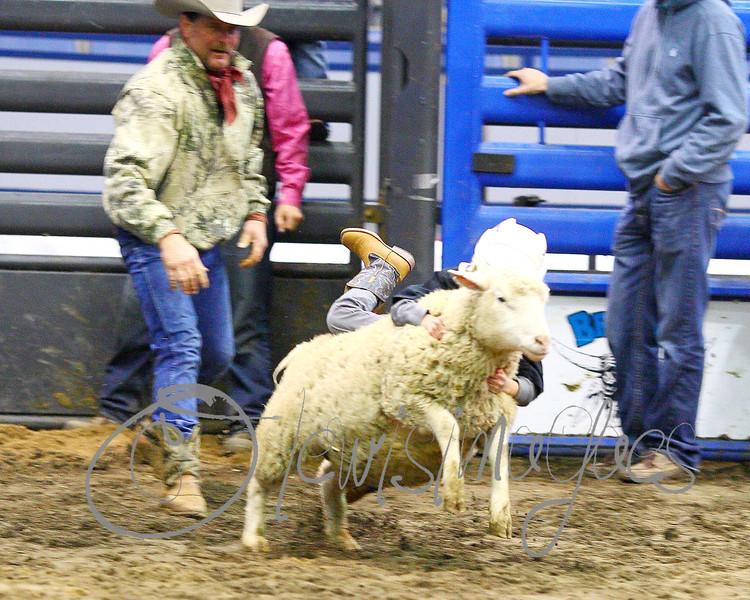 LI3_3224_Wild_Wool_Ride2012