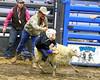 LI3_3228_Wild_Wool_Ride2012