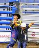LI3_3240_Wild_Wool_Ride2012