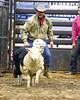 LI3_3242_Wild_Wool_Ride2012