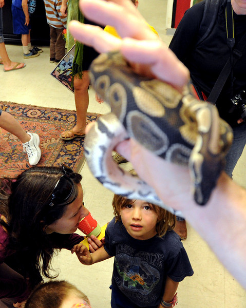 "Jamie Smalley assures her son, Rocco, 5, that the snake will stay up there with the handler.<br /> The Wild Bear Mountain Ecology Center in Nederland celebrated Earth Day with live animals, activities, speakers, among other things on Sunday. For a video and more photos of Wild Bear, got to  <a href=""http://www.dailycamera.com"">http://www.dailycamera.com</a>.<br /> Cliff Grassmick / April 22, 2012"